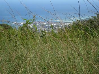 Mauritius (Grand Baie)